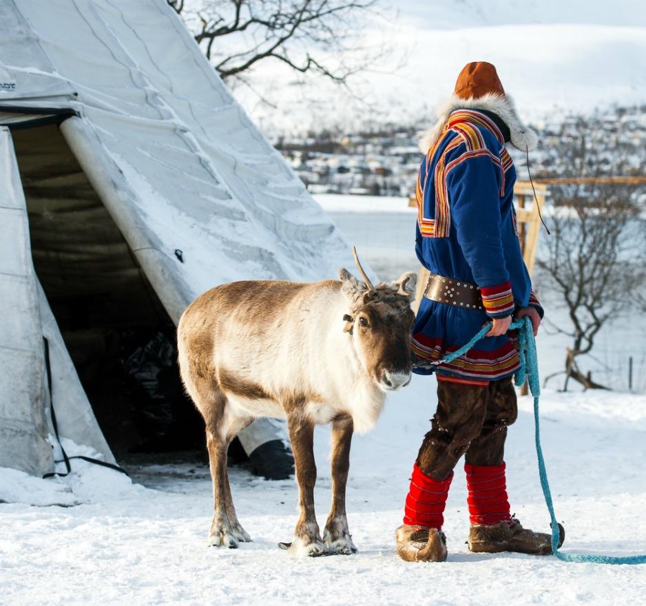 An image of a Sami man and his reindeer