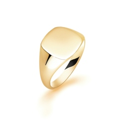 HRR1621 9CT YELLOW GOLD, GENTS SIGNET RING, SIZE S - yellow