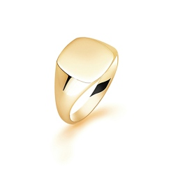 HRR1629 9CT YELLOW GOLD, GENTS SIGNET RING, SIZE W - yellow