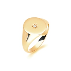 9ct Yellow Gold Gents Oval Signet Ring - 9ct Yellow Gold Gents Oval Signet Ring
