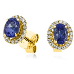 HEOGBS250 Blue Sapphire Single Halo Earrings - yellow